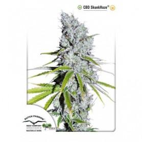 CBD Skunk Haze - 3 semillas