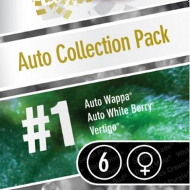 Auto collection pack1