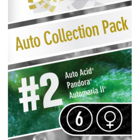 Auto collection pack2