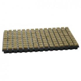 Bandeja lana roca 25x25x40 (18und) (150 alvéolos)