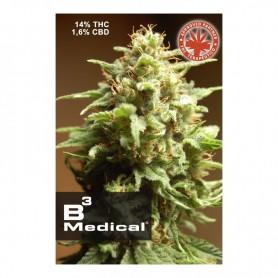 B3 Medical (1 semilla)