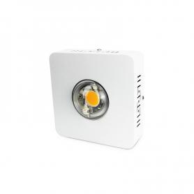 LED Agrolite 72W CREE CXB3590 BIN CD