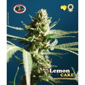 Sch'Lemon Cake