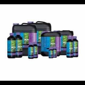 B'Cuzz hydro nutrition A
