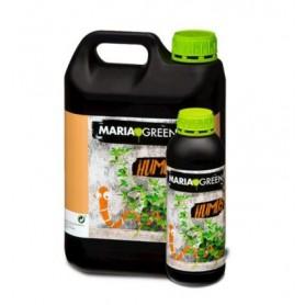 Humus vegetal
