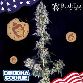 Buddha cookie