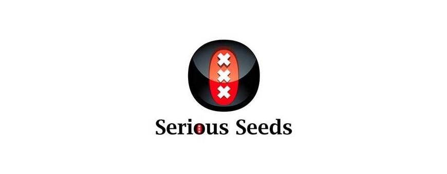 Venta de semillas regulares | Distribuidora Semillera Multimarca | El Punto Eres Tú