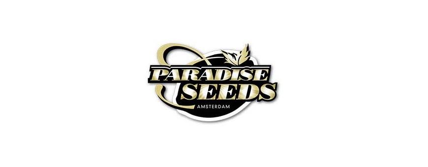 Semillas Paradise Seeds de Marihuana |El Punto Eres Tú ®