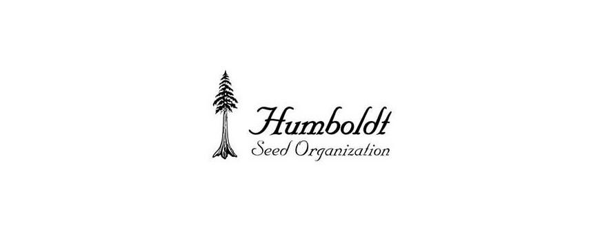 Semillas Humboldt Seeds de Marihuana |El Punto Eres Tú ®